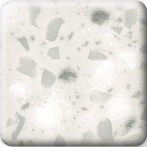 silver_birch (1)